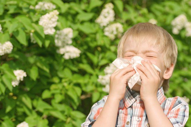Cum putem influența evoluția naturală a alergiilor respiratorii - Clinica Medicum